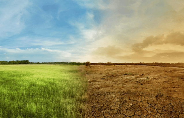Sols pollués et protection de l'environnement